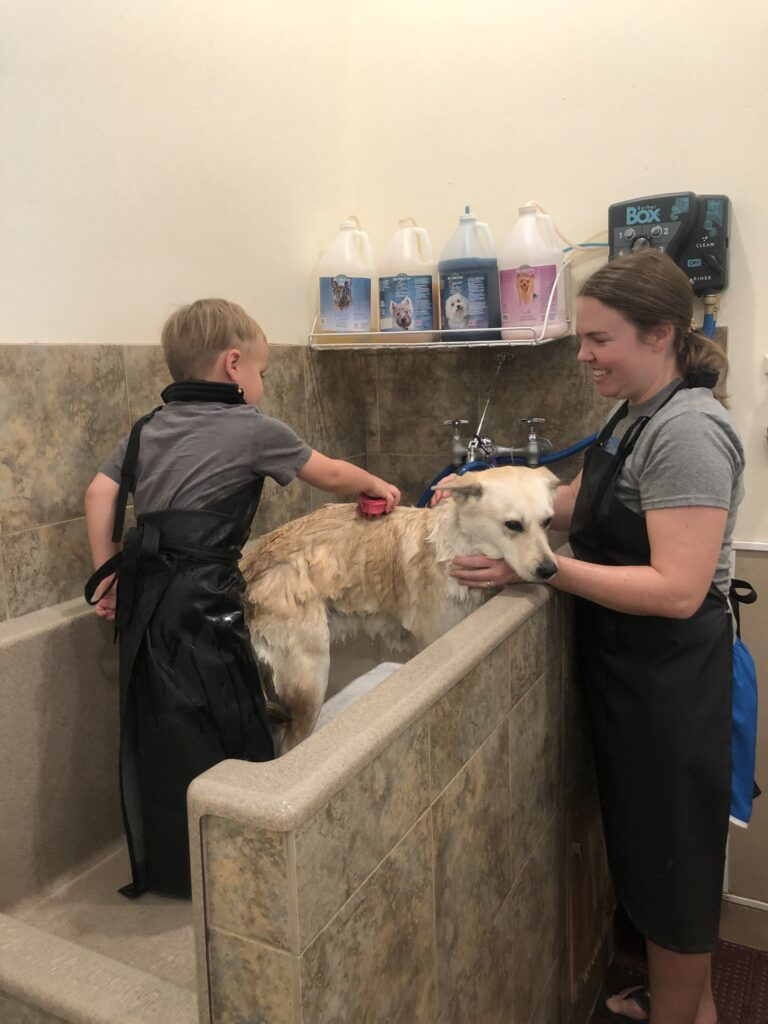 self-dog wash phoenix az